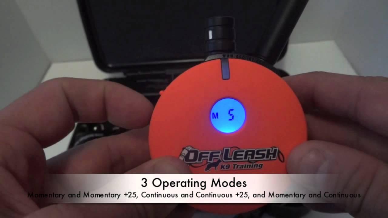 New Off-Leash K9 Training E-Collar - YouTube