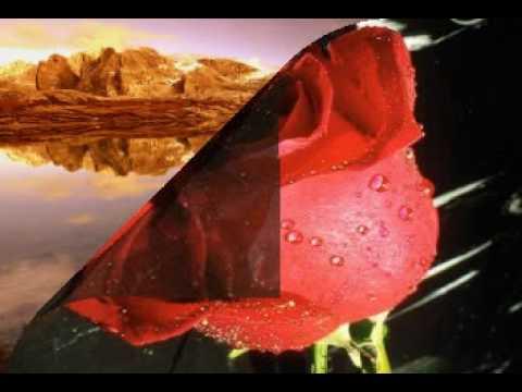 Burak Aydos - Bossonova mp3 indir