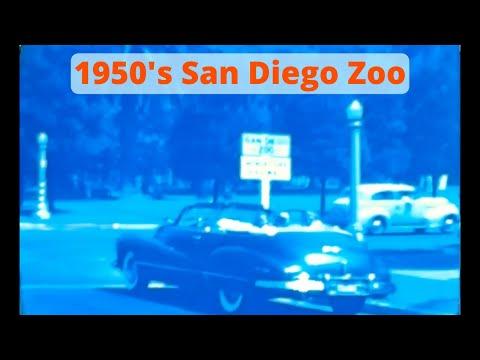 San Diego - San Diego Zoo Vintage Footage