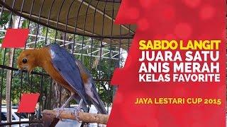 BRANDY WATCH : Sabdo Langit Anis Merah Teler Doyong Gacor Juara Nasional