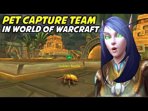 Pet Capture Team - Pet Battling in WoW