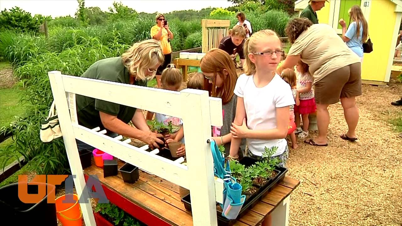 Kinder garden youtube for Kinder gardine