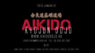Aikido dojo Hungary (demonstration)