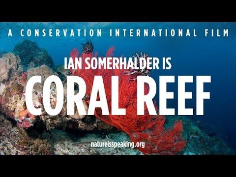 Nature Is Speaking – Ian Somerhalder is Coral Reef | Conservation International (CI)