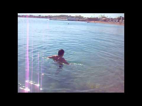 как русские туристы пугали акул в Египте