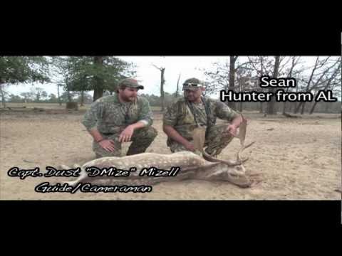 Florida Fallow Deer Hunt