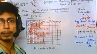Antibody test (quantitative tests)
