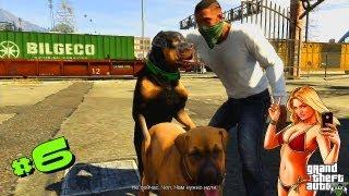 """Прохождение GTA V   Groove Street или """"даже у пса есть секс"""" #6"""