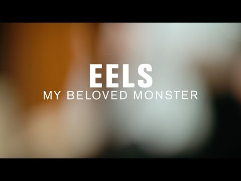 Eels - My Beloved Monster (Live on The Current)