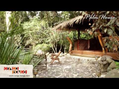 Congo Bongo Ecolodges - Dream Palm House - Manzanillo Beach Costa Rica