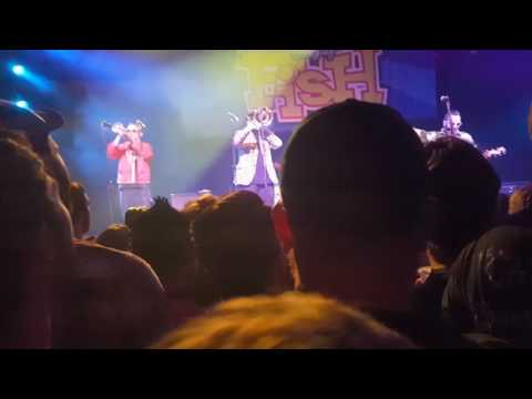 Reel Big Fish Another F. U. Song