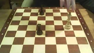 Шахматы для начинающих 4 урок