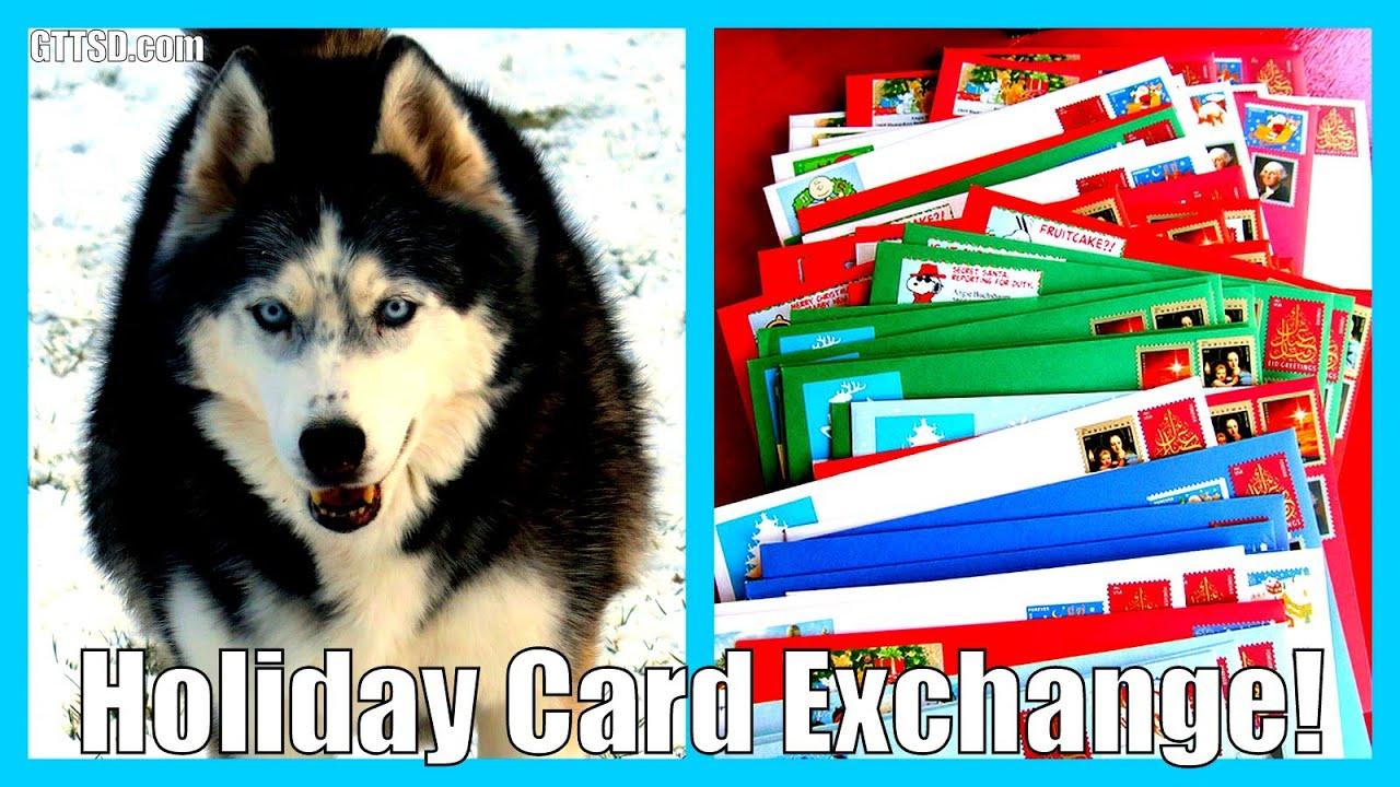 Husky Christmas Cards.Holiday Card Exchange Husky Christmas Cards 2015 With Gttsd
