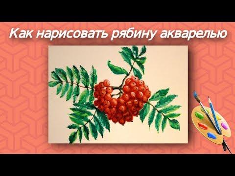 Как нарисовать росток
