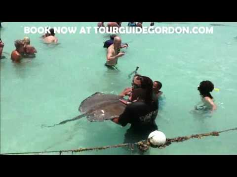 Stingray City Antigua (www.Tourguidegordon.com)