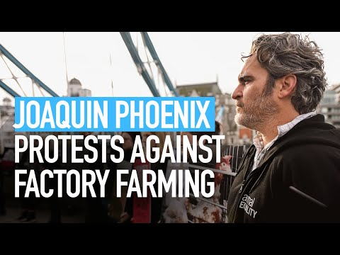 Joaquin Phoenix protests against factory farming