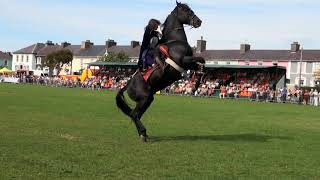 Repeat youtube video Hunt and Stunts - jumping, Amazing Horse Freestyle
