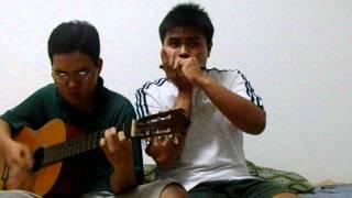 Cánh Bướm Vườn Xuân guitar + harmonica