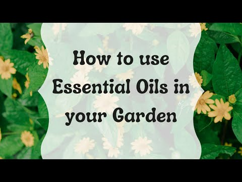 How To Use Essential Oils In Your Garden