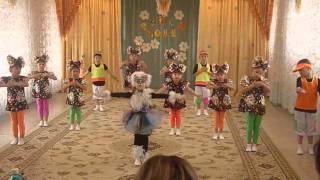 """Рауан 2014 Песня """"Кошка беспородная"""" д/с №53"""
