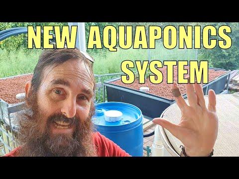 NEW Aquaponics System 🌱🐟 & Viewers Questions