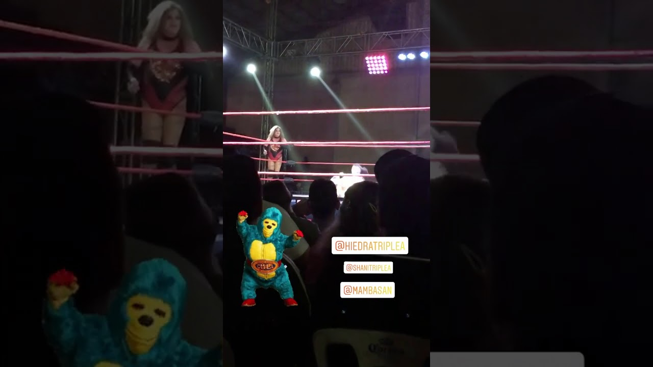 Lady Shani 17-05-20 Instagram Stories Luchadora de AAA