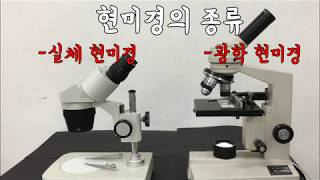 Y샘 과학교실 - 초등과학. 5학년. 6학년. 현미경의…