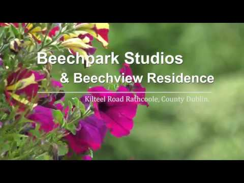 Beechpark Studio For Sale In Ireland