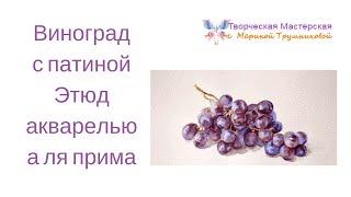 Виноград с патиной  Этюд акварелью а ля прима(Один из способов написать виноград акварелью. Бесплатный курс