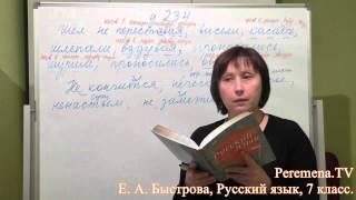 peremena TV Русский язык, Быстрова,  234