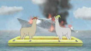 llamas with hats 2
