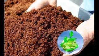 Как получить биогумус(компост)