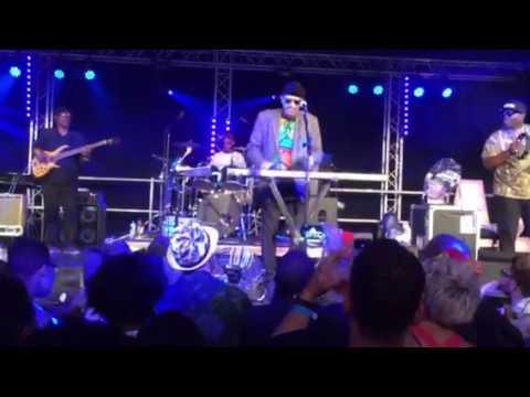 Roy Ayers Ealing Jazz Festival