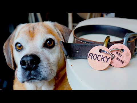 Make copper tags for your pup!