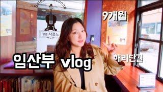 vlog#62: 임산부 일상, 9개월, 아기옷 빨래, …