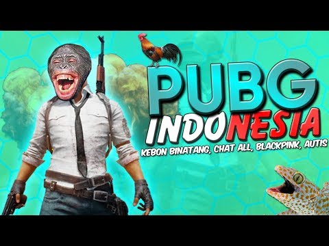 PUBG Indonesia - Kebun Binatang, Blackpink, Chat All, Autis