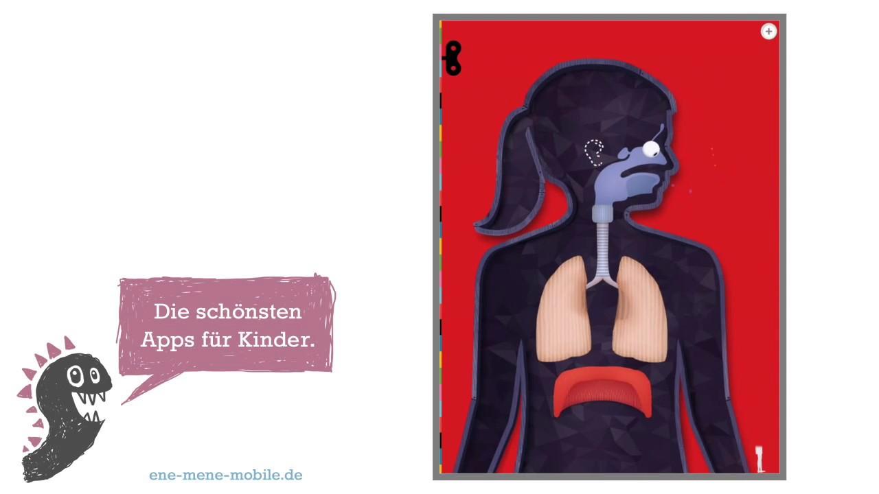 Anatomie Kinder-Lern-App 🔎 Der menschliche Körper 🔎 App-Vorschau ...