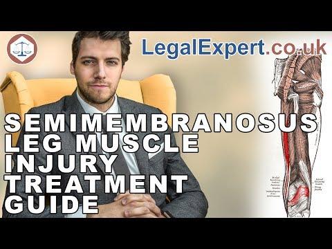 Semimembranosus Leg Muscle Injury Treatment Guide ( 2019 ) UK