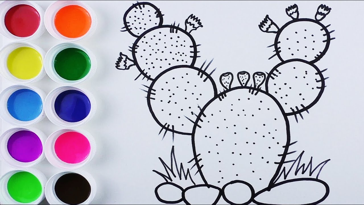 Dibuja Y Colorea Cactus De Arco Iris Videos Y Dibujos Para Niños Learn Colors Funkeep