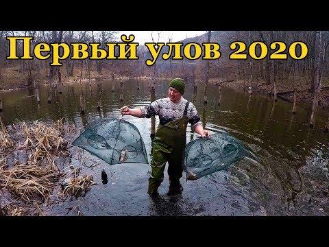 ЛОВЛЯ РАКОВ НА РАКОЛОВКИ! МАРТ 2020 ПЕРВЫЙ УЛОВ НА 7 КИТАЙСКИХ РАКОЛОВОК