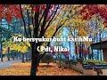Gambar cover Ku bersyukur Buat KasihMu Lyric  Pdt Niko