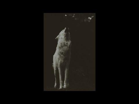 The Wolves Inside (007) by Em Harriss ORIGINAL