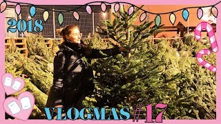 VLOGMAS #17: Kupujemy choinkę!