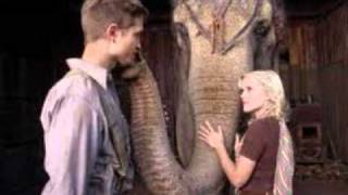 Water for Elephants trailer song #1