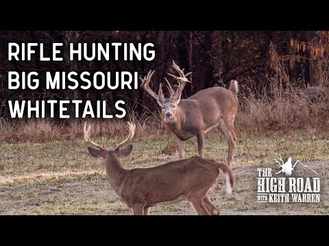 Big Missouri Whitetails with Mr. Whitetail | Oak Creek 2016