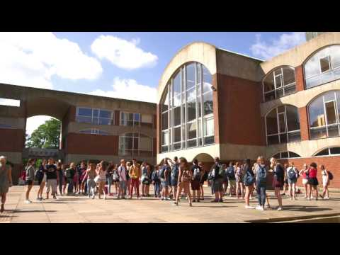 University of Sussex - an international overview