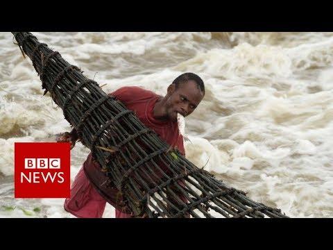 Congo: The River  - BBC News