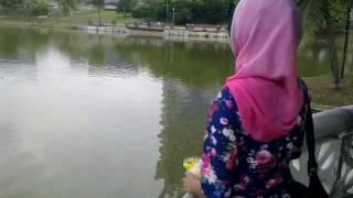 fish feeding by miza sharini(in memorial)