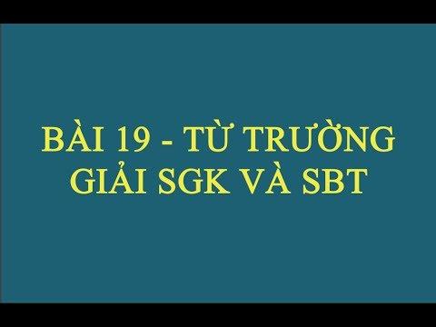 Giải Bài Tập Vật Lý 11 SGK Và SBT – Bài 19 – Từ Trường