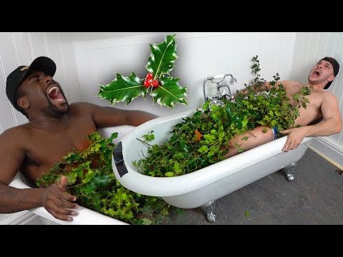 Bathing In The Sharpest Holly Bush